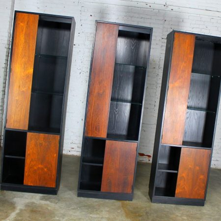 Vintage Harvey Probber Alternating Door Display Cabinets Rosewood & Ebonized Oak Set of 3