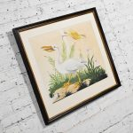 Vintage Vittorio Raineri Watercolor Painting of Pelican & Egret 1837